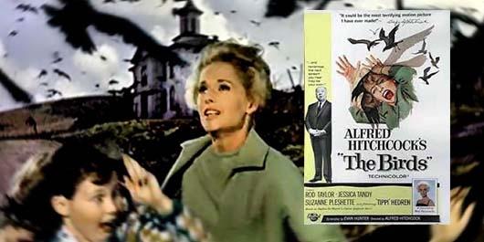 Sinema Tarihinin En İyi  Korku Filmleri 3