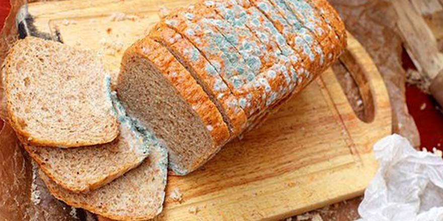 Ekmeklerin Küflenmesini Önlemenin Yolları