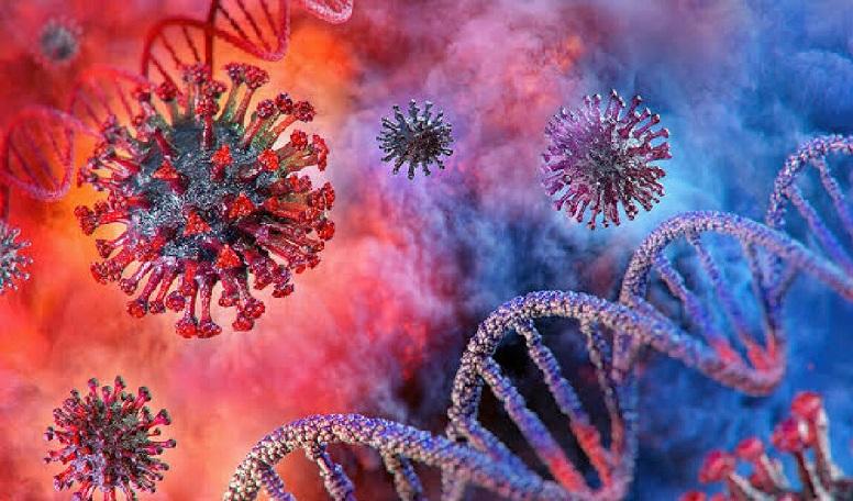 Koronavirüste bulaşma katsayısı nedir? 1