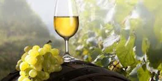 Evde Şarap Nasıl Yapılır 2