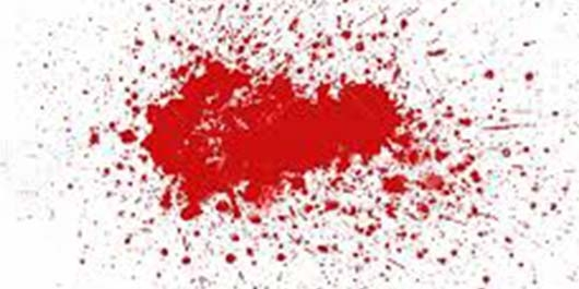 Kan Lekesi Nasıl Çıkar 8